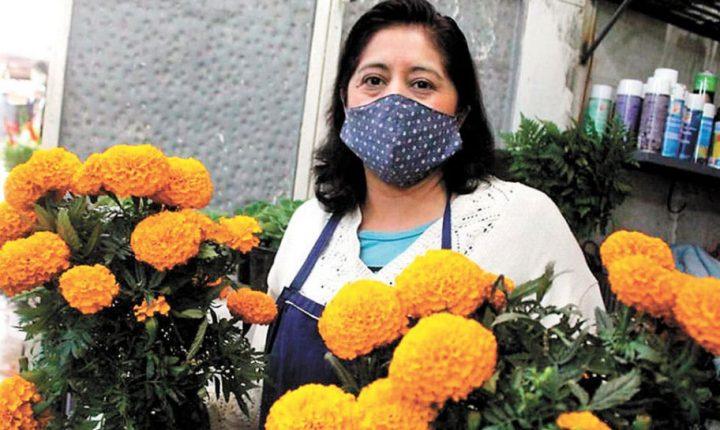 Invitan a no dejar morir la flor de cempasúchil en Morelos